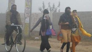 Delhi weather today: Cold wave conditions to prevail in national capital