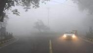 Weather Update: Noida schools reopen, cold conditions likely to abate over northern India