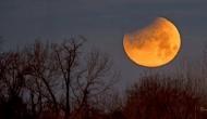 चंद्र ग्रहण से पहले अस्त हुए शुक्र, इन राशियों पर पड़ेगा प्रतिकूल असर