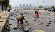 इस देश में हो रही है सौ साल से मछलियों की बारिश, आजतक पता नहीं चला रहस्य