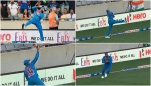 IND vs NZ T20: रोहित शर्मा ने पकड़ा शानदार कैच,  देखकर दातों तले उंगली दबा लेंगे आप