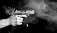 BJP MP's son shot at in Lucknow