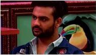 Bigg Boss 13 Weekend Ka Vaar: Vishal Aditya Singh evicted from Salman Khan show
