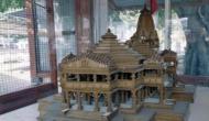 राम मंदिर निर्माण से पहले शुरू हुआ तकरार, ट्रस्ट पर आमने-सामने संत समाज और मोदी सरकार
