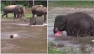 Video: नदी के तेज बहाव में बह रहा था आदमी, हाथी ने देखा और फिर जो हुआ यकीन नहीं करेंगे
