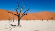 ये है दुनिया का सबसे पुराना रेगिस्तान, जहां आज भी मौजूद हैं