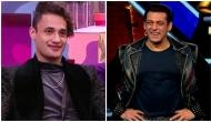 It's double treat for Asim Riaz! BB 13 runner-up likely to work with Salman Khan