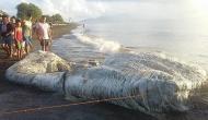 समुद्र किनारे लोगों ने देखा रहस्यमयी जीव, पैरों तले खिसक गई जमीन, बताया समुद्री शैतान