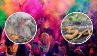 Holi 2020: कहीं बिच्छू तो कहीं अस्थियों के साथ खेलने की हैं परंपरा, जानकर हैरान रह जाएंगे आप