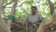 UP man builds treehouse to keep himself in seclusion amid COVID-19 outbreak