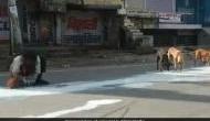 कोरोना वायरस: सड़क पर गिरा दूध मटके में भरता दिखा शख्स, Video देख हो जाएंगे इमोशनल
