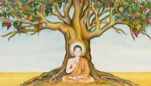 Buddha Purnima 2020: पूर्णिमा के दिन ये काम करने से होगी भगवान की कृपा