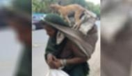 It's Viral! This image of migrant woman carrying dog on her back leaves netizens teary-eyed!