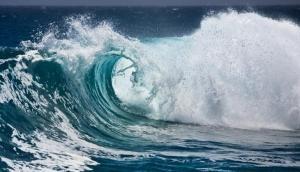 हिन्द महासागर में मौजूद विशाल टेक्टोनिक प्लेट को लेकर शोध में हुआ ये चौंकाने वाला खुलासा