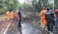 Cyclone Nisarga : मुंबई में तेज बारिश और आंधी, नरीमन पॉइंट इलाके में उखड़े पेड़, NDRF तैयार
