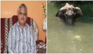 Hyderabad man announces Rs 2 lakh reward for those assisting in finding Kerala elephant's killer
