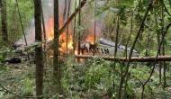अमेरिका के जॉर्जिया में विमान दुर्घटनाग्रस्त, एक ही परिवार के चार सदस्यों समेत पांच की मौत