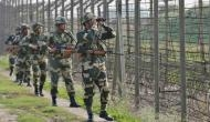 जम्मू-कश्मीर: पाकिस्तान ने फिर किया संघर्ष विराम का उल्लंघन, भारतीय जवानों ने दिया मुंहतोड़ जवाब, मार गिराए 10 सैनिक