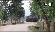 J-K: 2 Hizbul Mujahideen terrorists killed in encounter