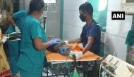 Maharashtra: Injured peahen rescued from Mumbai's Raj Bhavan