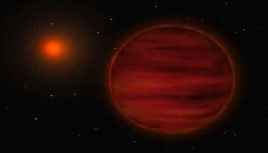 Two bizarre brown dwarfs found with citizen scientists' help