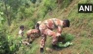 ITBP personnel take part in sapling plantation drive in Shimla
