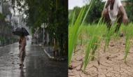 Weather Update: यूपी के ये जिले झमाझम बारिश से हुए सराबोर, इन जिलों में बने सूखे जैसे हालात