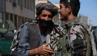 Eid ul-Adha: US welcomes Taliban's ceasefire announcement