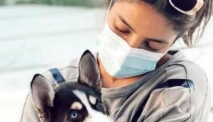 Priyanka Chopra 'can't get enough' of her adorable dog 'Panda'