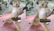 इंसानों की तरह इकतारा बजाता नजर आया बंदर, वीडियो देखकर खुश हो जाएंगे आप