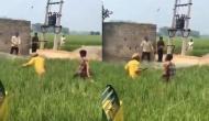 खेत में काम करते वक्त किसान ने किया जबरदस्त डांस, वीरेंद्र सहवाग ने शेयर किया वीडियो