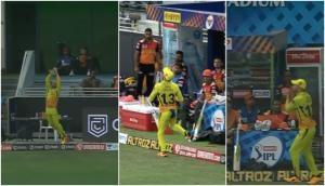 IPL 2020: फाफ डु प्लेसिस ने हवा में उछलते हुए पकड़ा शानदार कैच, देखते रह गए डेविड वार्नर, दिया ऐसा रिएक्शन