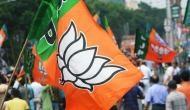 BJP leading in Bihar's Darbhanga assembly seat: ECI