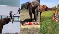 इस शख्स की मालिश करते नजर आया हाथी, वीडियो में देखें हैरान कर देने वाला शानदार नजारा