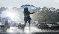 Video of Kamala Harris dancing in the rain goes viral; netizens call her 'amazing'