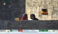 पाकिस्तान: छत पर ऐसा क्या कर रही थीं महिलांए, जिनकी Live मैच में तस्वीर दिखाने पर ट्रोल हो गया कैमरामैन
