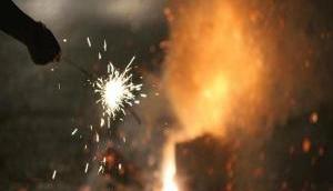 Delhi-NCR: इस दिवाली आप नहीं छोड़ सकेंगे पटाखे, NGT ने 30 नवंबर तक आतिशबाजी पर लगाई रोक