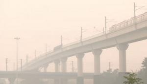 Thin layer of fog envelopes Delhi, visibility affected