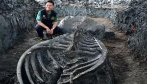 यहां मिला पांच हजार साल पुरानी व्हेल का कंकाल, देखकर वैज्ञानिक भी रह गए हैरान