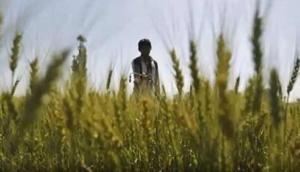 किसान ने 200 रूपये महीने में लीज पर ली थी जमीन, फिर पल्टी किस्मत और रातों रात बन गया लखपति