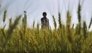Farmers Protest: सुप्रीम कोर्ट द्वारा बनाई गई कमेटी से खुद को एक व्यक्ति ने किया अलग, कल होगी सरकार और किसानों की बातचीत