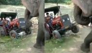 दलदल में फंस गई ट्रैक्टर-ट्रॉली, वीडियो में देखें हाथी ने कैसे की किसान की मदद