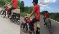 इस शख्स की दिलेरी को आप भी करेंगे सलाम, वीडियो में देखें बाइक पर मगरमच्छ को बांधकर कैसे की राइड