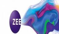 ZEE एंटरटेनमेंट के 15 ठिकानों पर इनकम टैक्स की छापेमारी, टैक्स चोरी करने का शक