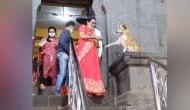 अजब: महाराष्ट्र के सिद्धिविनायक मंदिर में अनोखी आस्था, कुत्ते से आशीर्वाद लेते दिखे लोग