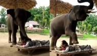 इस हाथी ने ऐसे की महिला की मालिश, वीडियो देखकर रह जाएंगे दंग