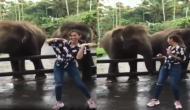 हाथी ने किया लड़की के साथ जबरदस्त डांस, वीडियो देखकर रह जाएंगे दंग