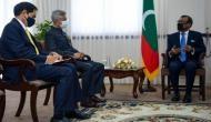 Jaishankar meets Maldivian Speaker Mohamed Nasheed, says 'Building democracy was big project in Maldives'