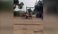 जब अकेले ही बीच सड़क पर तांगा ले उड़ा घोड़ा, वीडियो में देखें फिर हुआ क्या