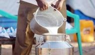 Khap panchayats in Haryana increase milk prices to Rs 100 per litre; know why